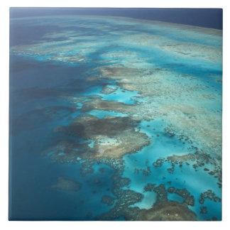 Arlington Reef, Great Barrier Reef Marine Park, Tile