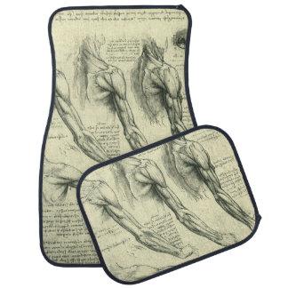 Arm and Shoulder Anatomy by Leonardo da Vinci Car Mat