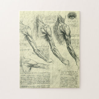 Arm and Shoulder Anatomy by Leonardo da Vinci Jigsaw Puzzle