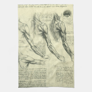 Arm and Shoulder Anatomy by Leonardo da Vinci Kitchen Towel