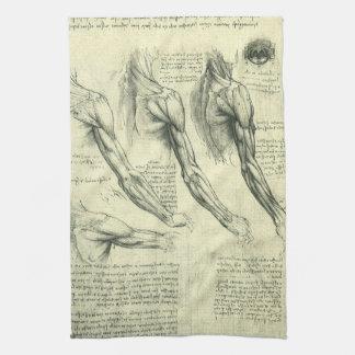 Arm and Shoulder Anatomy by Leonardo da Vinci Towel