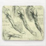 Arm and Shoulder Muscles Anatomy Leonardo da Vinci Mouse Pad