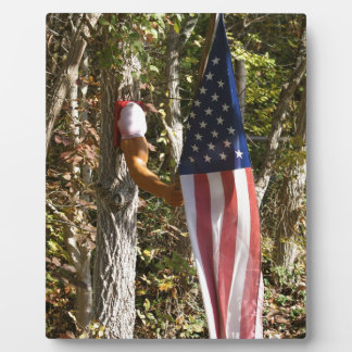 Arm Flag Holder Fun Americana American Plaque