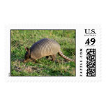 Armadillo-1 Postage Stamps