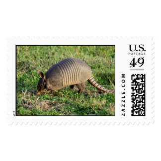 Armadillo-1 Timbre Postal