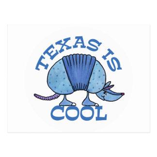 Armadillo Blue-Texas is Cool Postcard