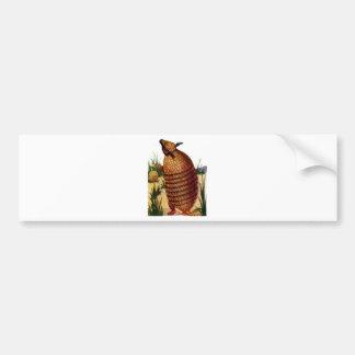 Armadillo Bumper Sticker