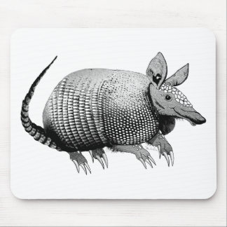 Armadillo from Texas - Glaze Mouse Pad