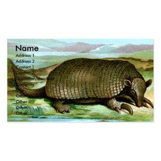 Armadillo gigante tarjetas de visita