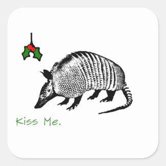 Armadillo Kiss Me Square Stickers