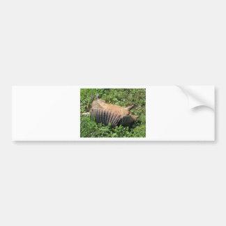 Armadillo Road Kill - Dasypodidae Bumper Sticker