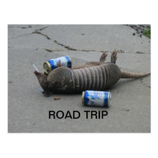 Armadillo Road Trip Post Cards