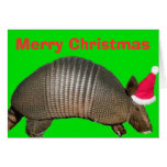 Armadillo Santa, Merry Christmas Greeting Cards