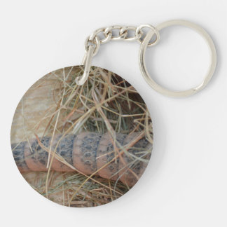armadillo tail in hay animal image keychain