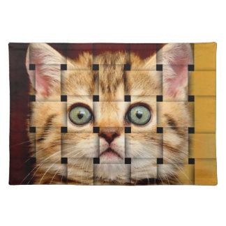 Armadura del gato mantel