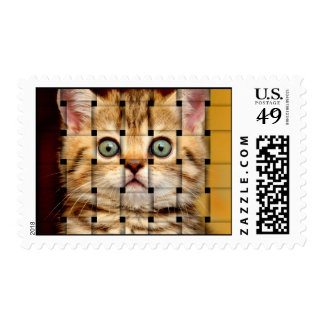 Armadura del gato timbre postal