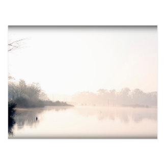 Armand Bayou fog Postcard