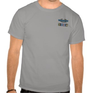 Armed Forces Expeditionary Medal CIB GRUNT Shirt