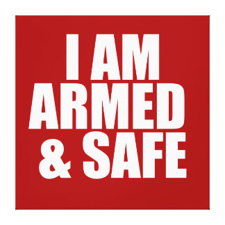 ARMED & SAFE POSTER CANVAS PRINT