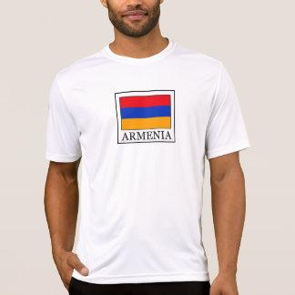 Armenia Poleras