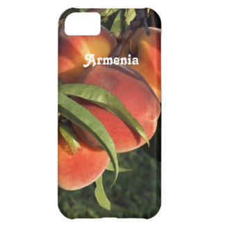 Armenian Apricots Case For iPhone 5C