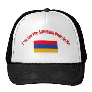 Armenian patriotic flag designs trucker hat