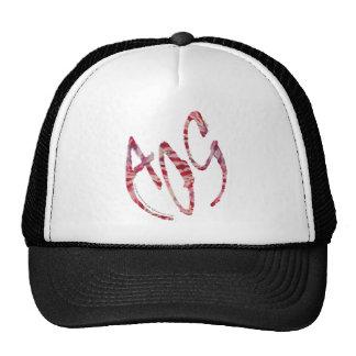 Armor Of God 2 Trucker Hat