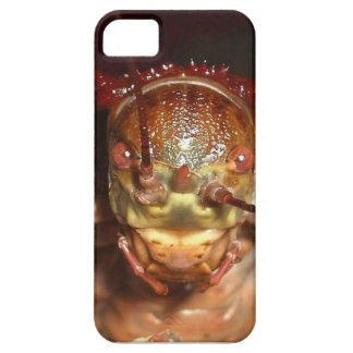 armoured bush cricket iPhone SE/5/5s case