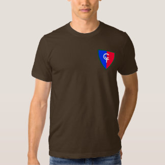 Army 38th Infantry Division T Shirt
