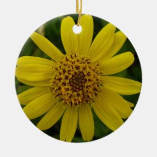 Arnica chamissonis ceramic ornament