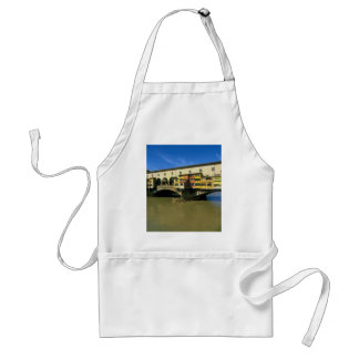 Arno River flooded Florence Italy Apron
