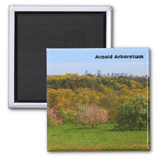 Arnold Arboretum 2 Inch Square Magnet
