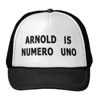 Arnold es Uno de Numero Gorra