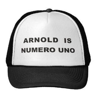 Arnold es uno del numero gorros