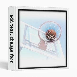 Aro de baloncesto con baloncesto