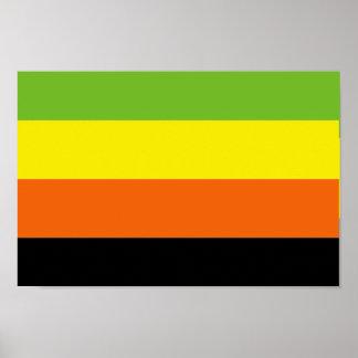AROMANTIC FLAG PATTERN POSTER