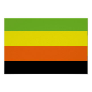 AROMANTIC PRIDE FLAG POSTER