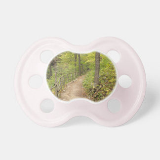 Around the Bend Pacifiers