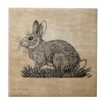 Arpillera del conejo de conejito