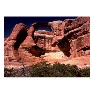 arquea manera de los arcos del parque nacional tarjetas de visita grandes