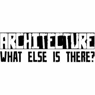 ¿Arquitectura qué más está allí? Escultura Fotográfica