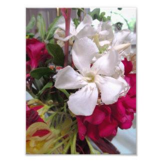 Arragement de la flor roja y blanca arte con fotos