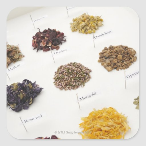 Arranged herbs square sticker