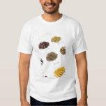 Arranged herbs T-Shirt