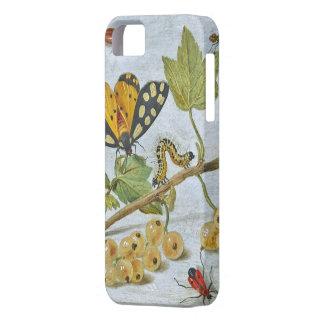 Arrastre de los insectos iPhone 5 protector