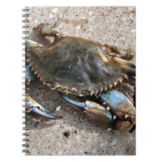 Arrastre del cangrejo azul libro de apuntes con espiral