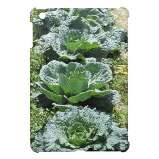 Array of cabbages iPad mini case