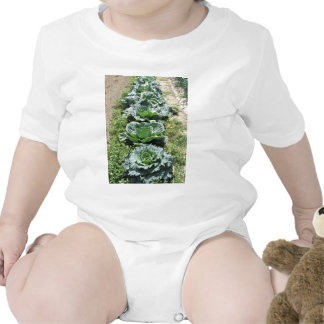 Array of cabbages baby bodysuit