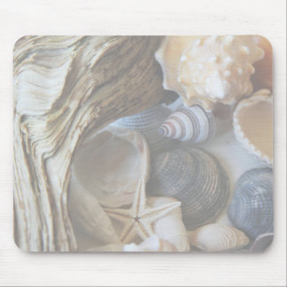 Array of Shells Mouse Pad