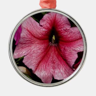 Arrebato floral adorno redondo plateado